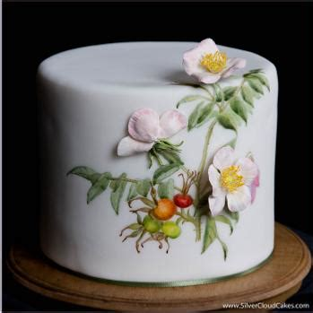 special occasion cakes by silver cloud cakes