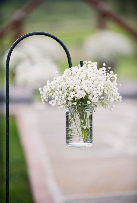 Benih Bunga White Babys Breath 1000 Images About Baby S Breath Wedding Inspirations On