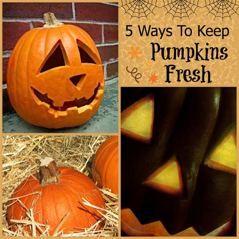 5 ways to keep pumpkins fresh