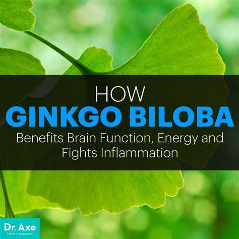 ginkgo biloba benefits energy mood memory dr axe