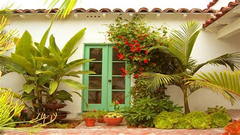 amazing tropical plants for small garden ideas small