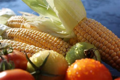 makanan   sih  dimaksud bubur jagung mayen
