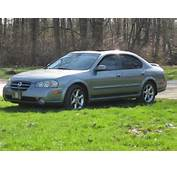 2003 Nissan Maxima  User Reviews CarGurus