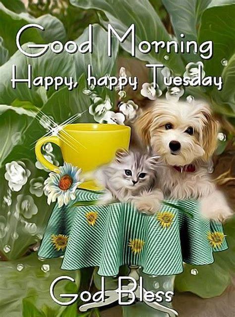 good morning happy happy tuesday pictures
