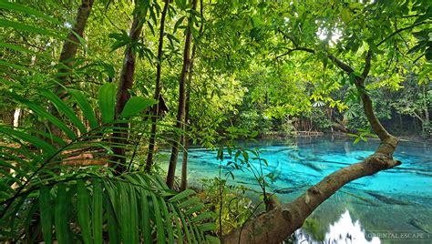 Kaos Souvenirs Thailand Jungle Tour jungle tour emerald pool waterfall day krabi sightseeing by escape