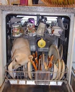 Can You Wash Clothes In Dishwasher How To Be A Retired What Would June Cleaver Do