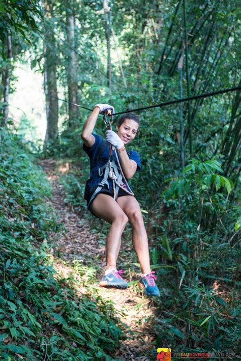 swinging in asia swinging with the gibbons zip lining laos far east