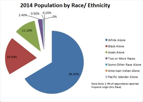 us demographics by race and ethnicity map us demographics gallery