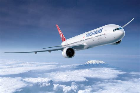 Airline Background Check Turkish Airlines Flights Budgetair Co Uk 174