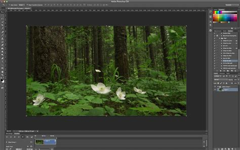 tutorial smudge photoshop cs6 indonesia photoshop tutorial add a blur to a video using photoshop