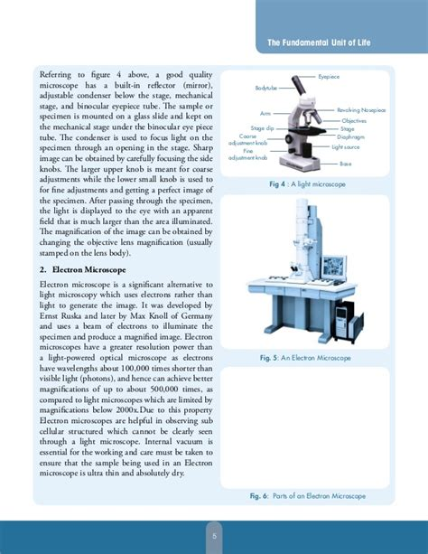 novel page layout biology book layout layout design book layout book