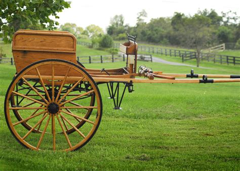 buggy wagen carriage auctions and sales current carriage auctions in