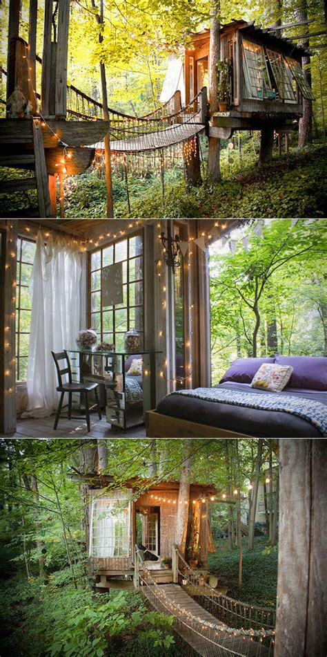 real life treehouse this is not ewok village from star wars just a real life