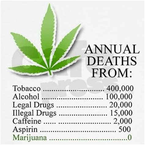 Is There Any Recorded Deaths From Cannabis Myth No One Has Died From Marijuana Metabunk