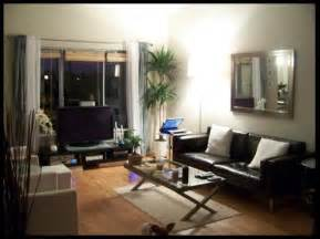 Modern Apartment Decorating Ideas Budget Small Condo Furniture Small Space Condo Interior Design Decorating For Small Condo Interior