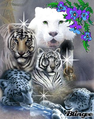 fantasy tigers picture 108764838 blingee com
