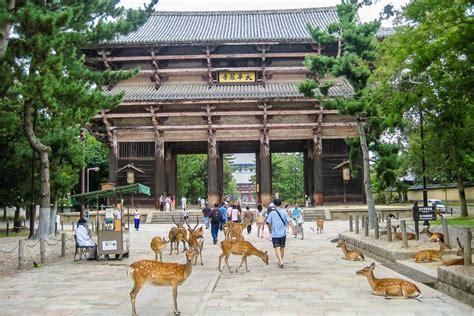 imagenes de nara japon qu 233 visitar en nara lo que no te puedes perder