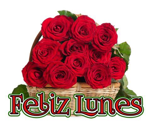imagenes de rosas feliz lunes banco de im 225 genes para ver disfrutar y compartir