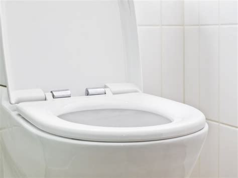 can you get a std from a toilet seat can you really get an std from a toilet seat reliant