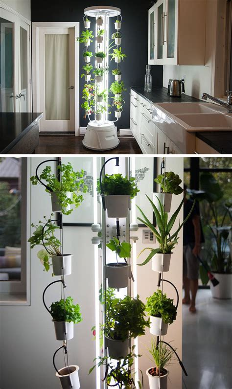 indoor kitchen garden ideas sitting room herb wall small