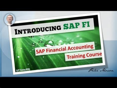 sap tutorial financial accounting sap fi co financial accounting overview course sap