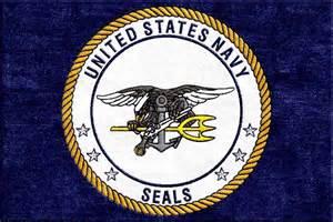 Childrens Wool Rugs Buy Us Navy Seal Logo Rug Online Rug Rats