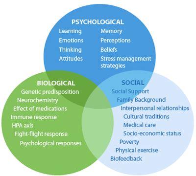 Social Detox Bellingham Wa by Psychiatry Unplugged What Is Psychosomatic Medicine