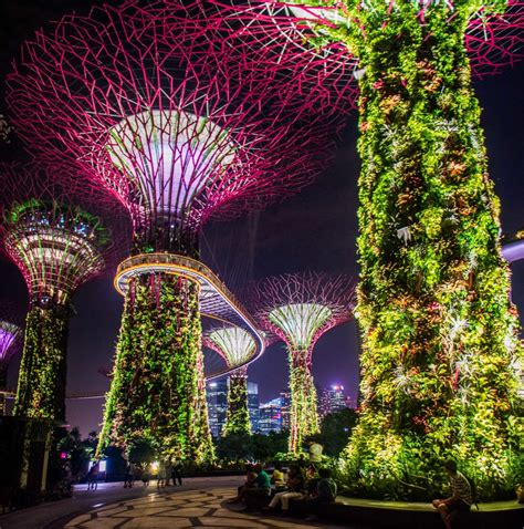 city lights georgetown showtimes gardens by the bay a futuristic garden in singapore no