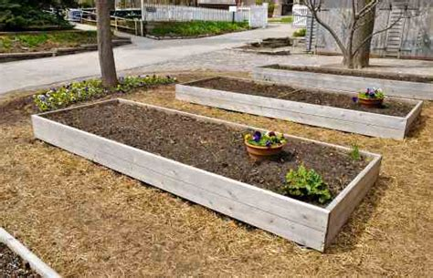 raised bed garden plans yard and garden