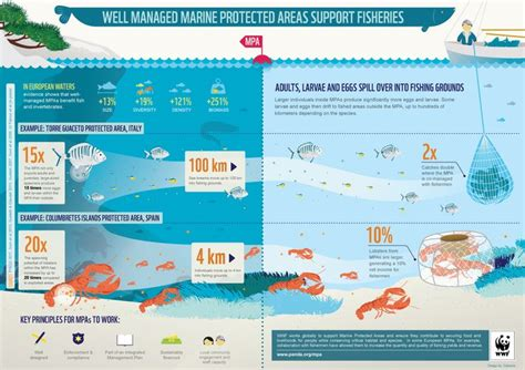 Indonesia Unite Graphic 5 wwf infographic how well managed marine protected areas