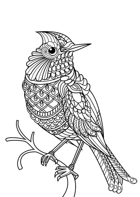 coloring books for adults animals 1079 best colouring animals zentangles images on