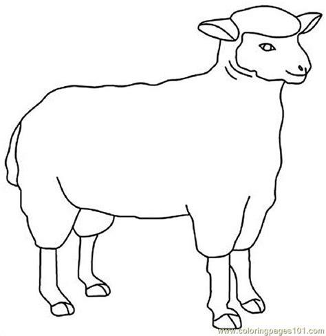 sheep coloring page pdf sheep13 coloring page free sheep coloring pages