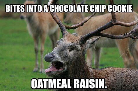 Raisins Meme - oatmeal cookie memes