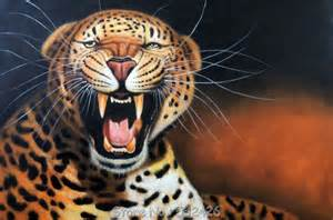 Can Jaguars Roar Leopard Jaguar Roar Snarl Big Cat Endangered 24x36