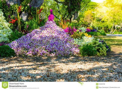 a shaped garden flower flower garden is shaped peacock stock photo image 64000782