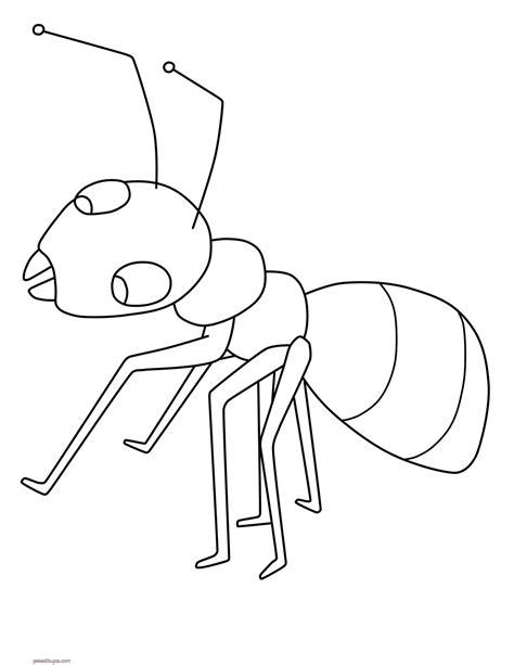 dibujos infantiles para colorear de hormigas dibujos de hormigas para colorear