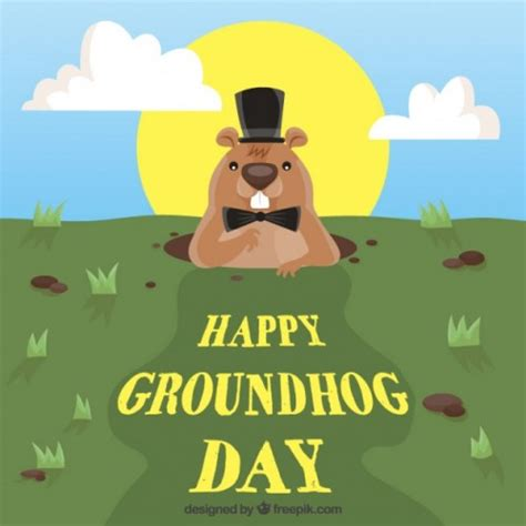groundhog day insurance gene insurance