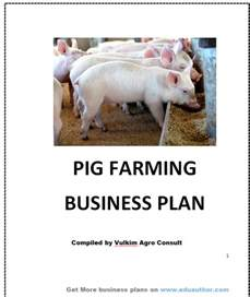how to start pig farming in nigeria rachael edwards