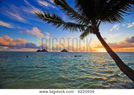 hawaii sunset images, illustrations, vectors hawaii