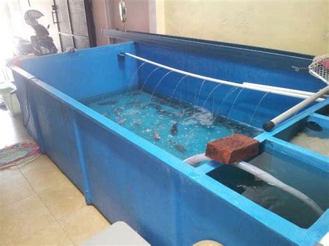 Daftar Harga Pakan Ikan Pt Matahari Sakti bak fiber budidaya ikan koi ukuran beragam harga terjangkau