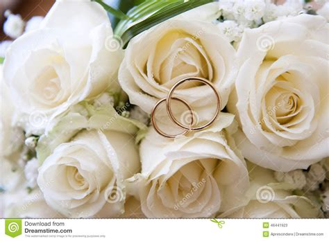 wedding rings on a bouquet of roses stock image image