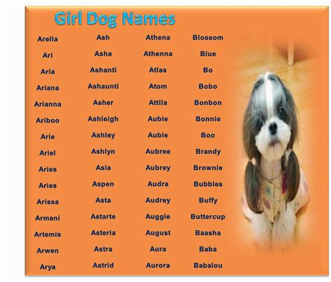 awesome puppy names cafechoo image unique names