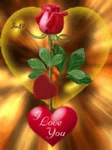lmagenes de corazones en agua con rosas y aves i love you con rosas y corazones para whatsapp con movimiento