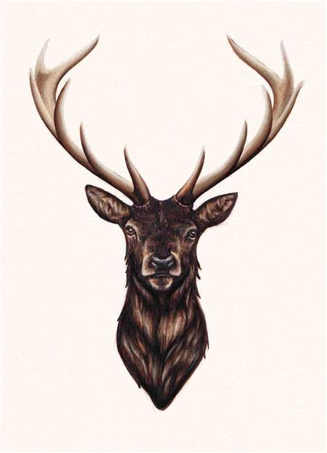 elk tattoos the 25 best elk ideas on