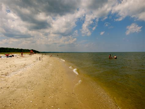 friendly beaches maryland calvert county southern maryland rich in fossils and more