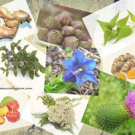alimentazione anticellulite efficace perdita di peso alldiete dieta anticellulite
