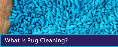 carpet and rug cleaning brisbane guide to carpet cleaning brisbane