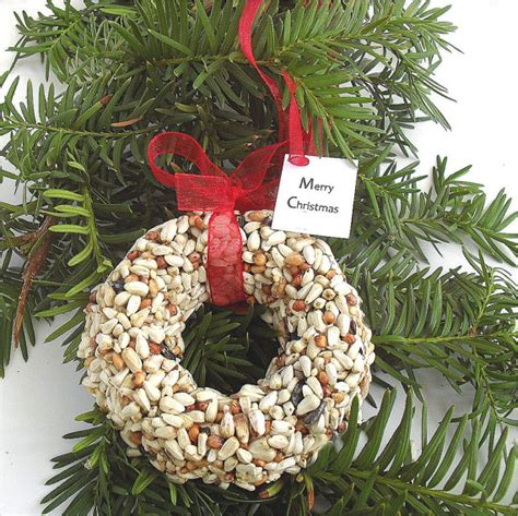 nature christmas favors
