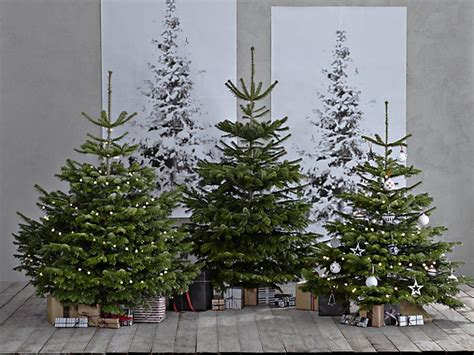 fake christmas trees for sale near me real trees for sale near me lisamaurodesign