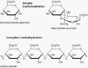 diagram of a carbohydrate carbs lighter4life